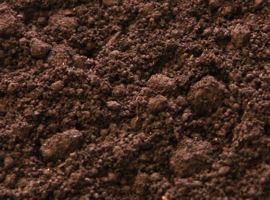 野菜の園芸用土